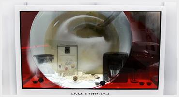 Vetrina digitale con display trasparente